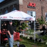 Waverly Ace Hardware
